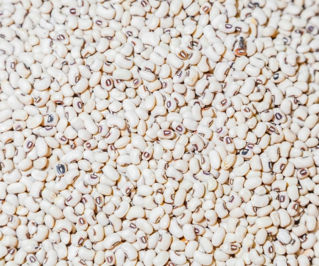 The top view close up of White Kidney Beans in Thailand street market for background photo