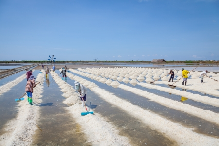 SAMUTSAKORN,THAILAN D -APRIL 28: The workers are sweeping the raw salt for ready to moving to the store near Rama II road on April 28,2013 in Samutsakorn,Thailand