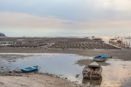 Oyster farm at Ang Sila district in Chonburi, Thailand photo