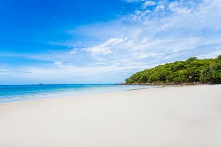 Sea beach blue sky sand sun daylighfor background use