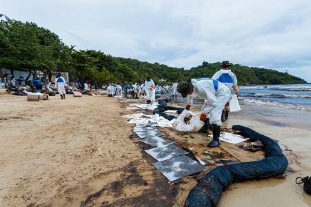 absorb: RAYONG,THAILAND-July 31   The workers from PTT use the absorb paper to absorb the crude oil on oil spill accident by PTT on Ao Prao Beach at Samet island on July 31,2013 in Rayong,Thailand Editorial