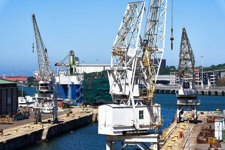 Three White Cargo Cranes in Industrial Port 写真素材