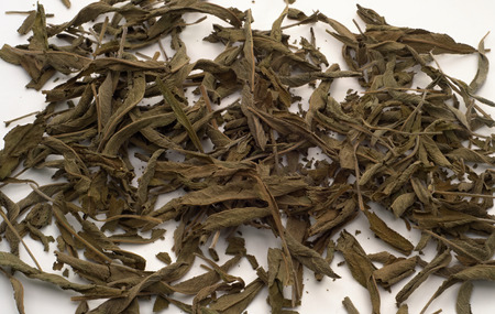 salvia: healthy and medicinal herbal salvia tea leaves