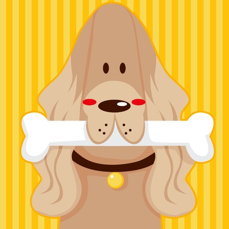 cocker: Funny English Cocker Spaniel cartoon character holding a bone on his mouth Illustration