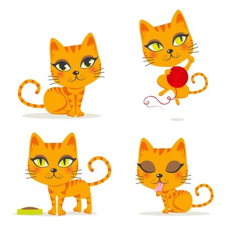 gato caricatura: Lindo gato atigrado de color naranja jugando y haciendo otras actividades