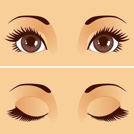 눈꺼풀 개방과 폐쇄와 함께 아름 다운 여자 갈색 눈의 근접 촬영 세부 그림 일러스트