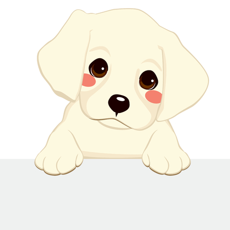 White labrador golden retriever puppy holding blank banner Vector