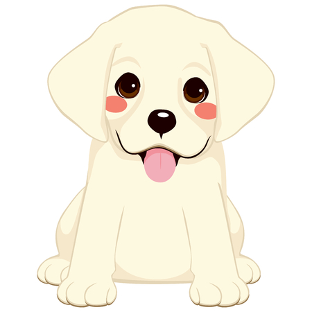 golden retriever puppy: Cute White labrador golden retriever puppy illustration
