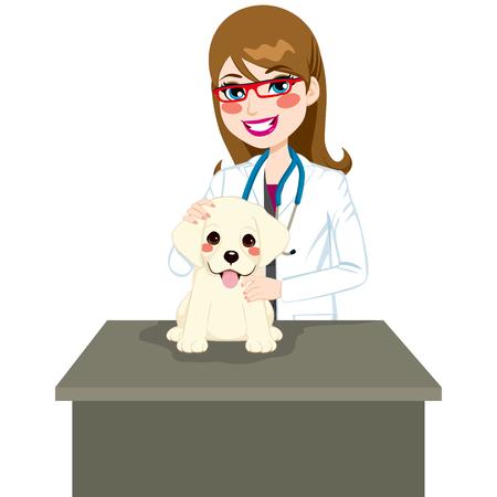 perro labrador: Lindo cachorro labrador sentado en la mesa veterinario visita Vectores
