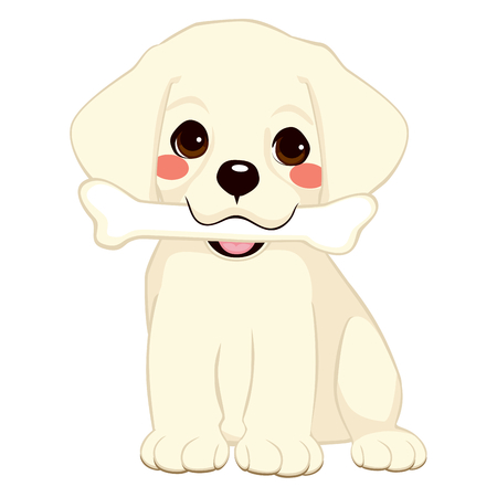 Cute dog puppy labrador holding big bone with mouth Vector