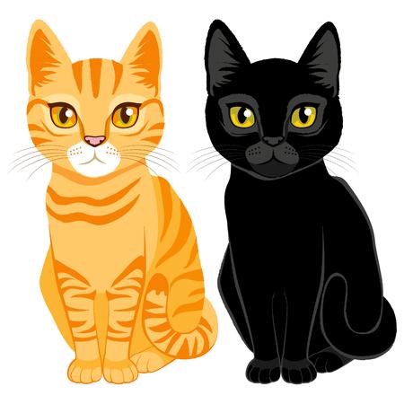 gato caricatura: Gatos lindos en naranja atigrado y color negro con ojos de color naranja y amarillo