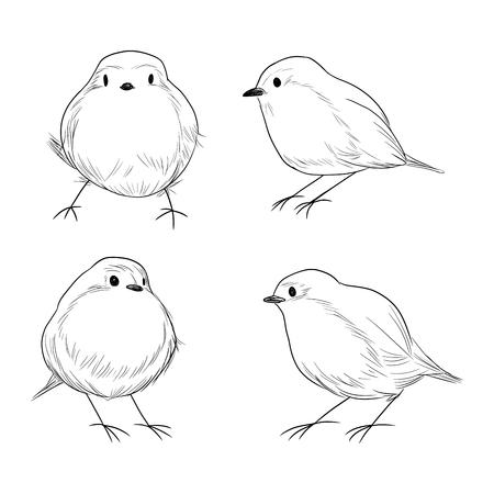 Hand drawn line art set of cute different Robin birds Vector