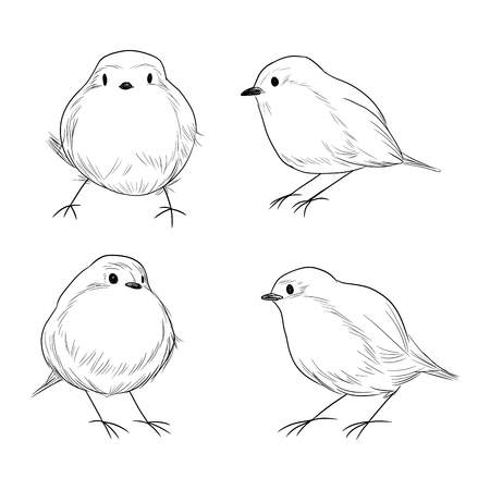 redbreast: Hand drawn line art set of cute different Robin birds Illustration