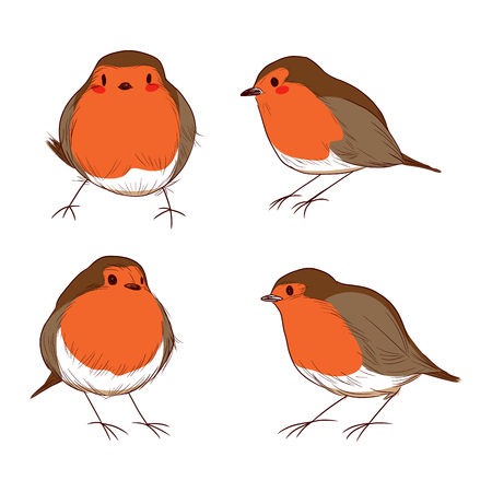 redbreast: Set of different hand drawn color cute robin birds