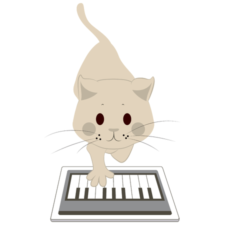 touching: Cute cat touching screen tablet playing with piano app