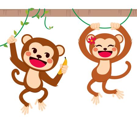 ast: Zwei nette lustige Affen auf Liane teilen Bananenfrucht mit Liebe