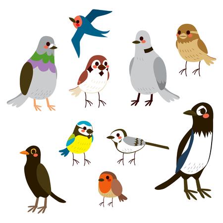 paloma caricatura: Colección de aves lindo conjunto con estilo de color plano