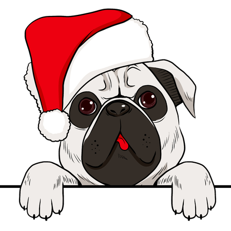 dog costume: Dog wearing red Christmas hat with empty white banner