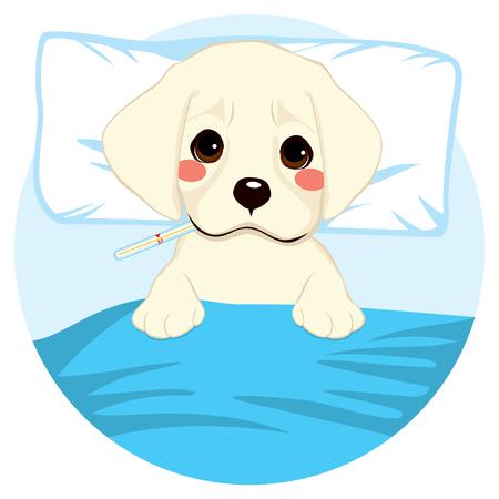 Carino piccolo cucciolo cane malato a letto con termometro