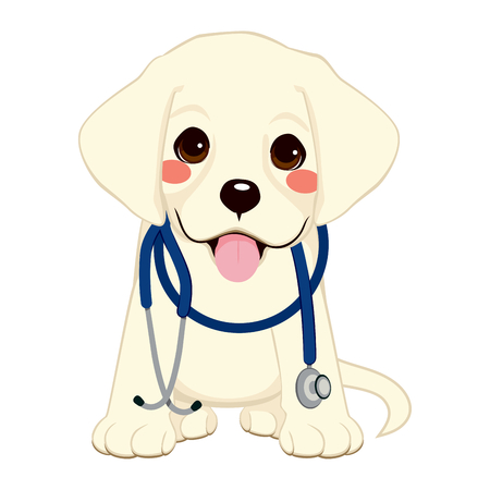 golden retriever puppy: Cute golden retriever puppy dog as vet with stethoscope on his neck Illustration