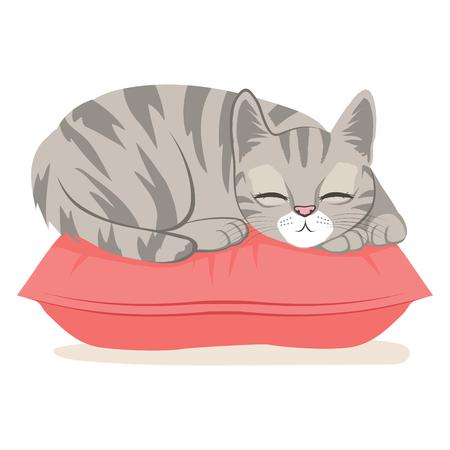 sweet dreams: Cute cat on a pink pillow sleeping happy having sweet dreams