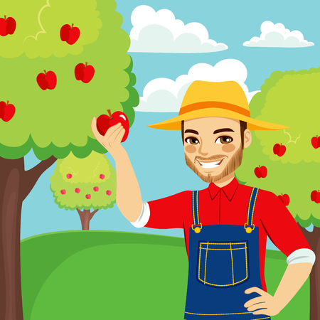Young farmer man picking red apple from tree