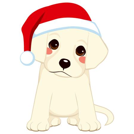 Lindo cachorro de poco retriever con sombrero de Santa Claus