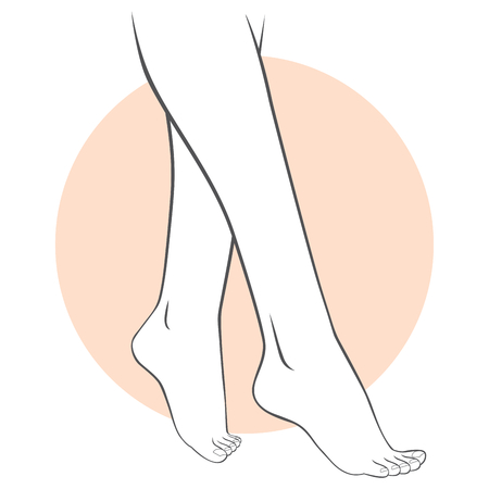 close up woman: Stylized illustration of female feet pedicure concept