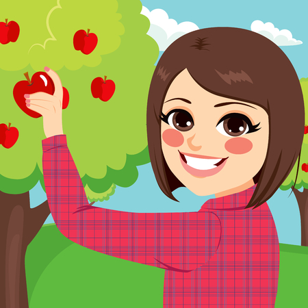Young brunette teenager girl picking organic red apple from tree in orchard happy smiling Illustration