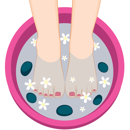 Illustration of female feet on spa bowl with stones and flowers having pedicure treatment