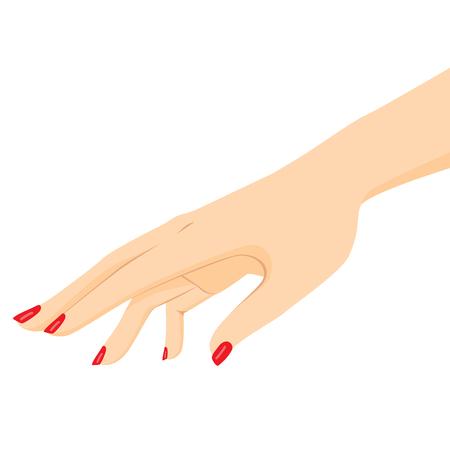 아름다움 개념을 밖으로 도달하는 여성 손의 그림을 닫습니다 일러스트