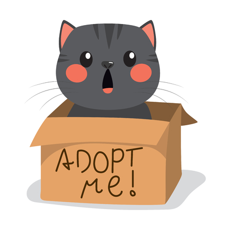 Cute black little cat with inside cardboard box with adopt me text. Illustration