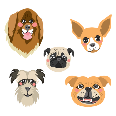 Flat color style different funny dog faces avatar collection