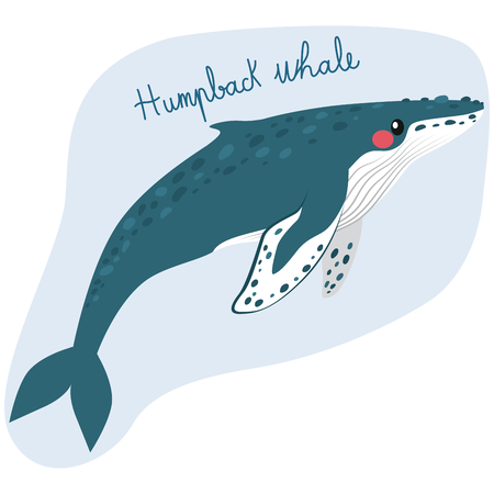 Large humpback whale illustration underwater with text.