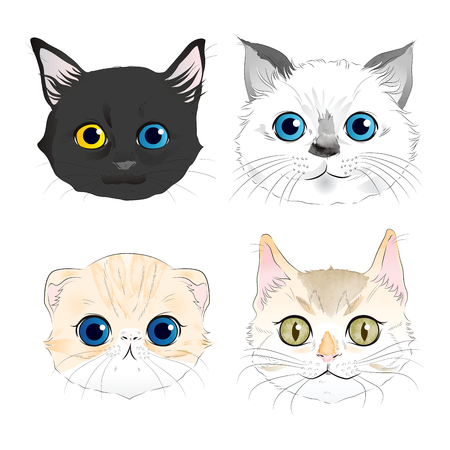 Set of watercolor style illustrations four cat heads portrait Stock Illustratie