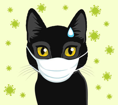 Worried cat wearing medical face mask covid-19 is dangerous for pets concept
