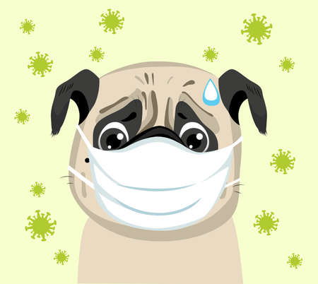 Worried dog wearing protective medical face mask coronavirus contagion concept