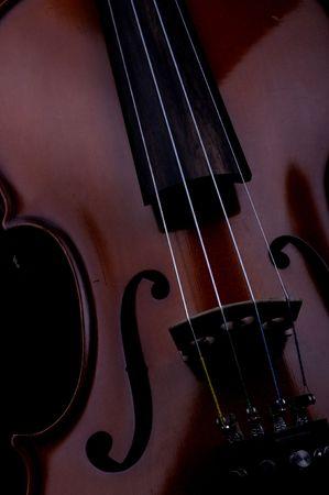 violins: violin closeup