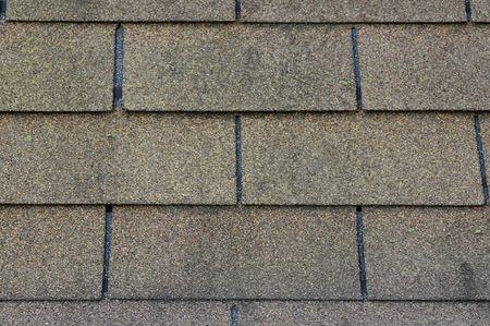 shingle: roof shingle
