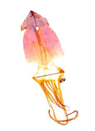 dried calamari snack Imagens