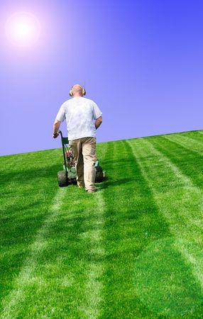 cut grass: mowing