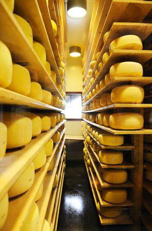 elaboraci�n de queso  Foto de archivo