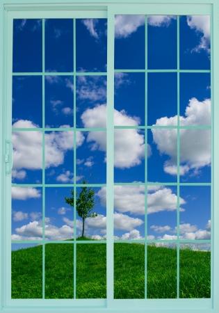 beautiful meadow through the window