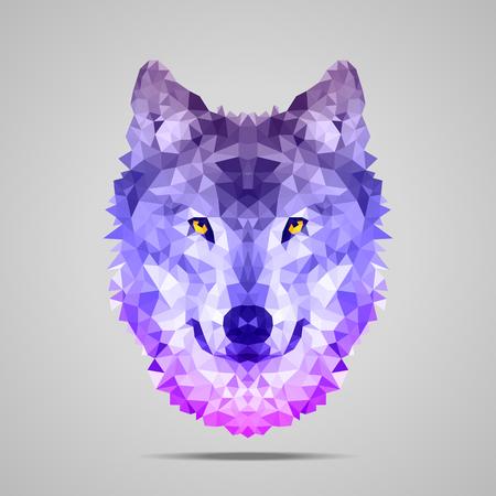 オオカミの低ポリの肖像画。対称の紫のグラデーション。抽象的な多角形のイラスト。  イラスト・ベクター素材