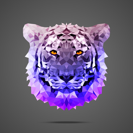 bengal: Bengal tiger low poly portrait. Gradient purple. Side light source. Abstract polygonal illustration. Illustration