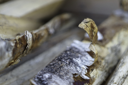 Birch bark on birch firewood