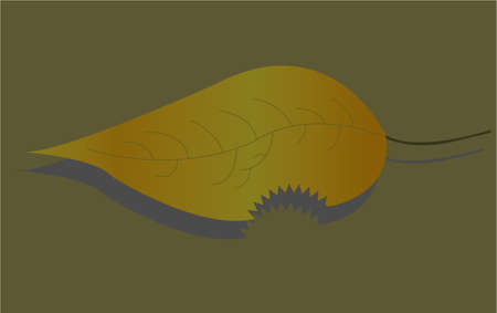 halm: the leaf
