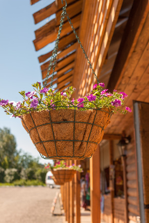 vibrant cottage: Hanging on chains natural vase of flowers