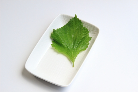 underlay: Leaves of shiso lined the dish, Stock Photo