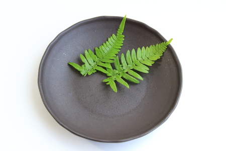 underlay: Leaves of underlay of fern
